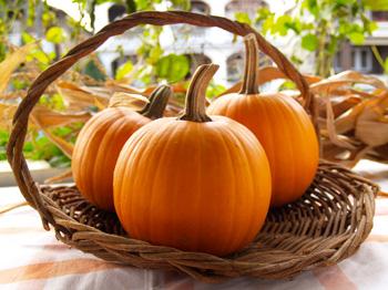 pie-pumpkins
